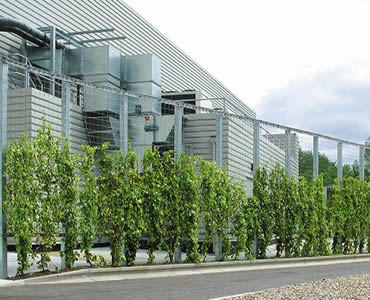 Green plants are on the stainless steel rope mesh which is outside of a factory.