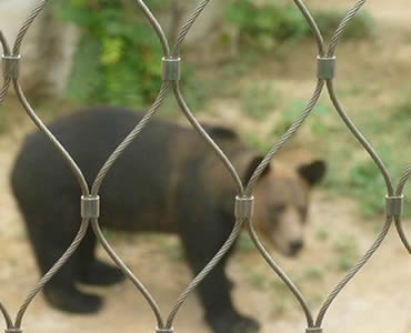 A bear is behind a piece of stainless steel ferrule rope mesh.